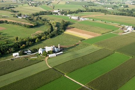 земельный участок для дачного хозяйства что это