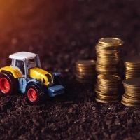 Налоговая служба разъяснила особенности направления сообщений о налогооблагаемых транспортных средствах и земельных участках