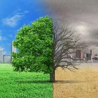 ОП РФ выступила против отсрочки внесения платы за негативное воздействие свалок на окружающую среду
