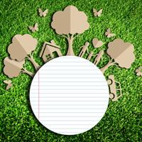 Разработаны меры по развитию в России экологического образования