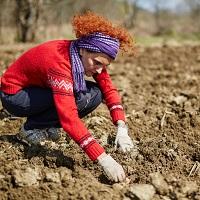 Дополнительные гарантии для женщин, работающих в сельской местности, внесены в ТК РФ