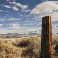 Штрафные санкции за самовольное занятие земельного участка могут увеличить