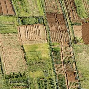 Двойной кадастровый учет земельного участка