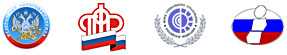 Отчетность в ФНС, ПФР, ФСС, Росстат