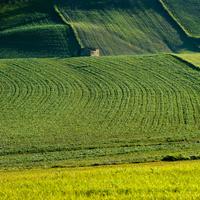 Порядок оспаривания результатов определения кадастровой стоимости земельных участков могут уточнить