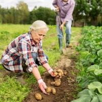 Обновлен список профессий граждан, имеющих право на дополнительную прибавку к пенсии