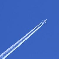 Возобновлены международные авиаперелеты из Кемерова и Петропавловска-Камчатского