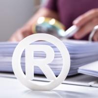 ГК РФ дополнят положениями о возможности регистрации товарных знаков на имя граждан
