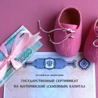 Минтруд России предлагает расширить правила получения отцами материнского капитала