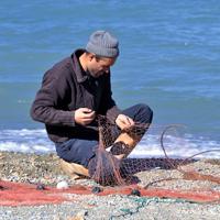 Россиян начнут штрафовать за нарушение правил ловли рыбы в открытом море