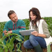 Главы крестьянских (фермерских) хозяйств должны отчитаться по страховым взносам за 2015 год по новой форме