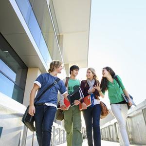 Сеть опорных университетов: костяк или костыль для образования?