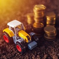 Налоговая служба разъяснила порядок заполнения заявления на налоговой льготы по транспортному и земельному налогам