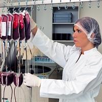 13 нормативных актов о безопасности донорской крови, исполнение которых проверит ФМБА