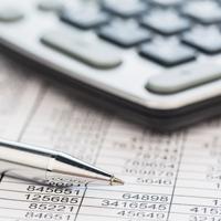 Поправки в законодательство о страховых взносах могут разрешить вносить только отдельными федеральными законами