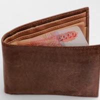 В России может появиться Агентство по выплате заработной платы