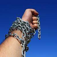 В Госдуму внесен президентский проект постановления об объявлении амнистии