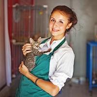 Антикафе, пристраивающее бездомных животных, не обязано передавать их первому обратившемуся