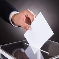 Трудовые коллективы могут приравнять к избирательным объединениям