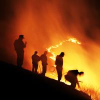 Россия может отказаться от тушения лесных пожаров в удаленных местностях