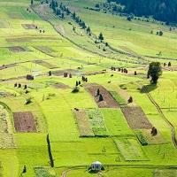 В Земельном кодексе РФ предлагается скорректировать права арендаторов при сдаче в субаренду государственных земельных участков