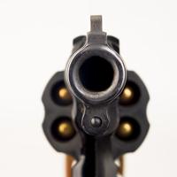 Владельцев газовых пистолетов могут избавить от обязанности ходить на стрельбище при переоформлении лицензии