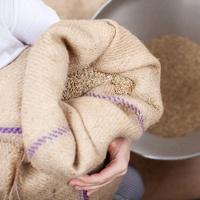 Российским сельскохозяйственным товаропроизводителям могут предоставить приоритет перед иностранными конкурентами