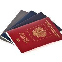 Предлагается установить дополнительные процедуры подачи уведомлений о наличии двойного гражданства