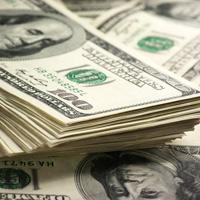 В Госдуму внесен законопроект, предусматривающий ряд валютных ограничений