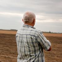 Финансирование программы развития сельских территорий может быть сокращено