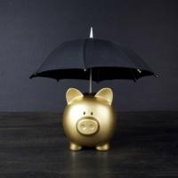 Требования к банкам, выдающим банковские гарантии, обеспечивающие заявки и контракты по Закону № 44-ФЗ, могут смягчить