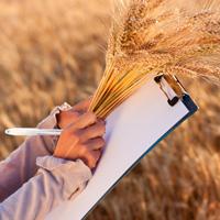 Плановые проверки соблюдения земельного законодательства могут участиться