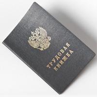 Минтруд России рассказал, как внести исправления в запись о наименовании организации в трудовой книжке