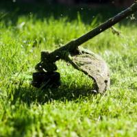 """Оплата скоса травы при содержании мест захоронения биологических отходов – """"нецелевка""""?"""