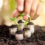 Эксперты рассказали о проблемах в сферах льготного кредитования фермеров