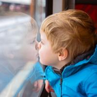 Предлагается отменить дополнительные требования к участникам закупки услуг по организованной перевозке групп детей автобусами
