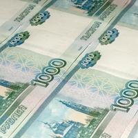 Региональным властям могут открыть доступ к налоговой тайне