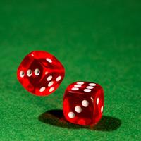 Расследовать преступления, связанные с незаконными организацией и проведением азартных игр, могут разрешить следователям органов, выявивших их
