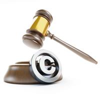 ОП РФ предложила альтернативу глобальной лицензии