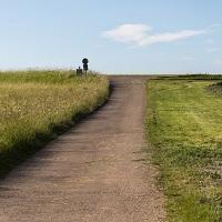 С 8 апреля увеличится число видов разрешенного использования земельных участков