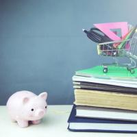 Школам предстоит применять новый код дохода для налогового учета и отчетности по НДФЛ