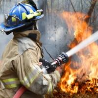 Изменятся правила противопожарного режима