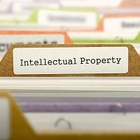 Руководитель Роспатента: система защиты интеллектуальной собственности в России полностью сформирована