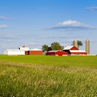 Порядок использования земель для строительства объектов сельхозназначения могут урегулировать