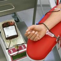 Установлены формы документов, необходимых для безвозмездного обеспечения донорской кровью