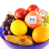 Законопроект о наказании за сокрытие наличия ГМО в продуктах приняли в первом чтении
