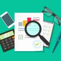 Правительство РФ утвердило концепцию системы налогового мониторинга
