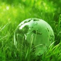 Намечен план реализации Стратегии экологической безопасности России до 2025 года