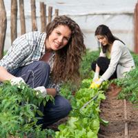 В законодательстве о сельском хозяйстве может появиться понятие агротуризма