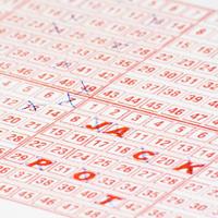 Организация и проведение азартных игр без лицензии могут стать уголовно наказуемыми